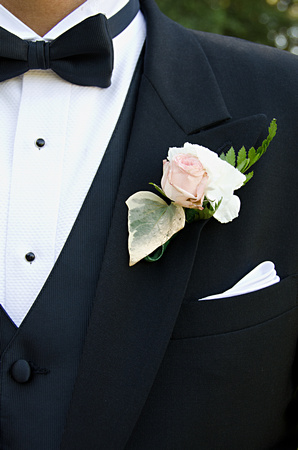 jehovah witness wedding photography